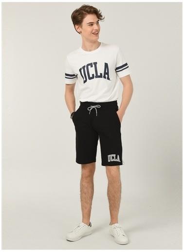 UCLA Ucla Sweat Şort Siyah